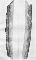 Grottes préhistoriques - English: Grotte du Trilobite, Arcy-sur-Cure, Yonne, Burgundy, France.  Taken from Abbé Alexandre Parat, Les Grottes de la Cure (côte d'Arcy): La grotte du Trilobite (between pp. 32-33): plate 5. Engraved bone, drawing showing both length sides.