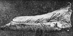 Grottes préhistoriques - English: Grotte du Trilobite, Arcy-sur-Cure, Yonne, Burgundy, France.  Taken from Abbé Alexandre Parat, Les Grottes de la Cure (côte d'Arcy): La grotte du Trilobite, plate 5 (between pp. 32-33). Deer bone (femur) with engraving of a branch with leaves (very rare; prehistoric engraving and pictures usually represent animals / humans, not plants).