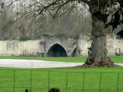 Ancienne abbaye cistercienne de Froidmont - Français:   Ruine d\'une salle voûtée.