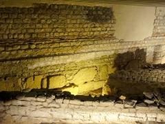 Enceinte gallo-romaine - Français:   Domus gallo-romaine et enceinte.