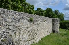 Ruines de l'ancien château et la butte sur laquelle elles sont situées - Français:   Chateau de Chateau Thierry , Aisne, France