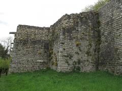 Ruines de l'ancien château et la butte sur laquelle elles sont situées - English: The tour rouge (=Red tower) of the castle of Château-Thierry (Aisne, France).