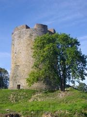 Ancien château fort de Guise - Château de Guise (Aisne, France): donjon