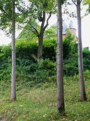 Eglise -  Saint-Algis (Aisne, France) -    L'église fortifiée, protégée à l'Est par un haut talus.