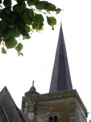 Eglise de l'Assomption -  Ailly-le-Haut-Clocher (Somme, France) - La flèche du clocher.