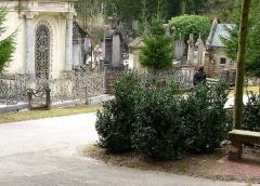 Cimetière de la Madeleine -  Amiens (Somme, France) -  Au cimetière de La Madeleine, une partie de l'Allée des aubépines vue depuis le côté arrière droit de la tombe de Jules Verne.   .