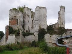 Ruines du château -  Château de Picquigny (2).