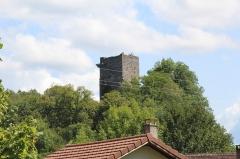 Château de la Dorches (restes) - Français:   Château de Dorches, Chanay.
