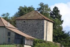 Donjon du Temple (vestiges) - Français:   Donjon du Temple, Chazey-Bons.