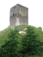 Site archéologique de la tour d'Albon, situé au hameau de La Tour -  Tour d'Albon dans la Drôme