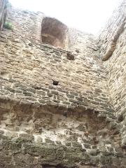 Site archéologique de la tour d'Albon, situé au hameau de La Tour -  intérieur de la tour d'Albon dans la Drôme