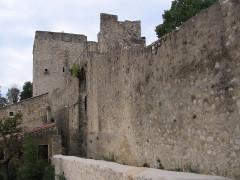 Château des Adhémar ou des Papes -  Château des Adhémar, Montelimar