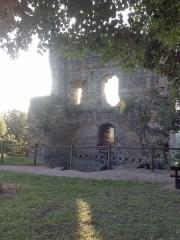 Château de Beauvoir (ruines) - Italiano: Château de Beauvoir et Couvent des Carmes. Beauvoir-en-Royans, Isère, France.