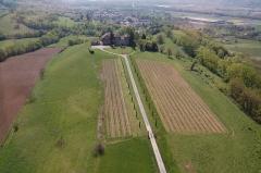 Château de Bayard (ruines) - Français:   Vue aérienne des vignes et du château au début du printemps