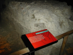 Ancien évêché -  salle du baptistère (V siécle) au musée de l'ancien évéché - Grenoble