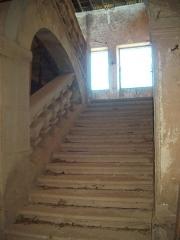 Château de l'Arthaudière -  Château de l'Arthaudière à St Bonnet de Chavagne (Isère) Escalier droit de l'aile nord  Photo prise par Daniel Etienne