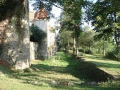 Château de Goutelas -  Goutelas'Castle ditch