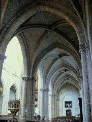 Eglise Notre-Dame - Français:   Montbrison - Collégiale Notre-Dame d\'Espérance - Collatéral sud