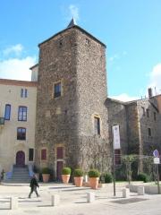 Château -  Le Donjon du Château de Roanne