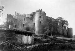 Château de Couzan (restes) - Deutsch: Burg Couzan, Ansicht von Norden