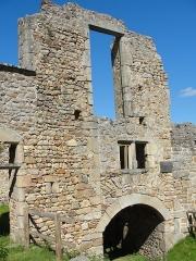 Château de Couzan (restes) - Français:   Vestiges de l\'ancienne forteresse médiévale de Sail (Loire), datés du XIe s.