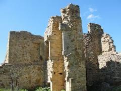Château de Couzan (restes) - Français:   Vestiges de l\'ancienne forteresse médiévale de Sail (Loire).