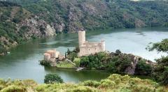 Château de Grangent (restes) -  The castle