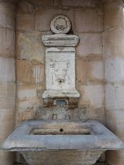 Fontaine du Taurobole - Français:   Détail.