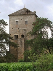 Château de Gevrey -  Chateau de Gevrey-Chambertin - Grosse tour carrée