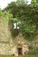 Ancien château -  chateau de moulins-engilbert