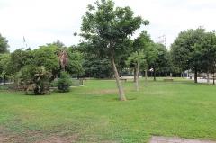 Hôpital Chalucet et jardin public Alexandre Ier - Français:   Jardin Alexandre Ier, Toulon.