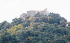 Eglise Notre-Dame de Domanova - Català: Santuari de Nostra Senyora de Domanova