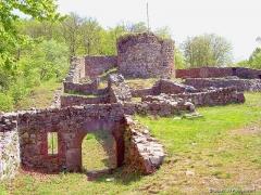 Château - Français:   Vue d\'ensemble des ruines du château de Rougemont, depuis l\'entrée.