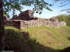 Château - Français:   Vue depuis le fossé extérieur sud, des ruines du château médiéval de Rougemont