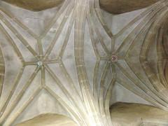 Eglise de l'Annonciation Notre-Dame - Français:   Dammarie-sur-Saulx (Meuse) église, détail plafond nef