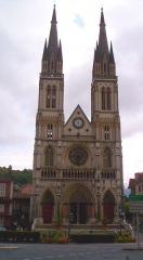 Eglise Saint-Bruno -  Cattedrale di San Bruno di Voiron