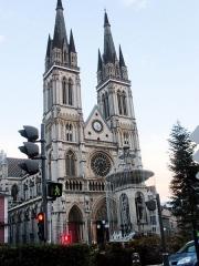 Eglise Saint-Bruno - L'église de Voiron. Au premier plan la fontaine gelée.