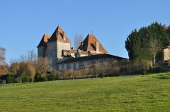 Château de Malvirade - English: Castillo de Malvirade desde la carretera