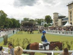 Hippodrome - English: Chantilly Racetrack Parade ring