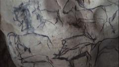"""Grotte ornée du paléolithique supérieur située au lieudit """"Combe d'Arc"""" dite grotte Chauvet -  Deer Drawing from the Chauvet Cave, France."""