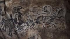 """Grotte ornée du paléolithique supérieur située au lieudit """"Combe d'Arc"""" dite grotte Chauvet -  Drawing of a group of lions, Chauvet Cave, France"""