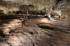 """Grotte ornée du paléolithique supérieur située au lieudit """"Combe d'Arc"""" dite grotte Chauvet - Ossements et bauge d'ours. Caverne du Pont d'Arc (copie de la Grotte Chauvet), paléontologie."""