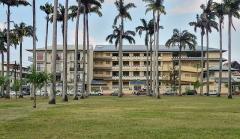 Place de l'Esplanade, dite place des Palmistes - English: Cayenne, French Guiana: place des palmistes, the EHPAD Saint-Paul in the background.