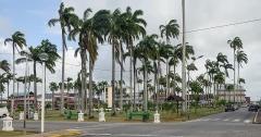 Place de l'Esplanade, dite place des Palmistes - English: Place des palmistes in Cayenne, French Guiana.