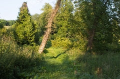 Village du Vieux Craonne -  Vue de l'emplacement de l'ancien Craonne / Craonne, Aisne, France