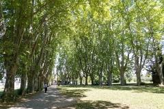 Bastide du Jas de Bouffan, dénommée aussi propriété Granel-Corsy du Jas de Bouffan - Deutsch: Park der Bastide du Jas de Bouffan, des Elternhauses von Paul Cézanne