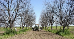 "Château de Bourgon - English: An Arrowhead Farms tractor pulls a contractor's specialized equipment that digs twin furrows 10 inches deep and buries a drip irrigation tube   between rows of pecan trees, during the installation of a micro irrigation system at Arrowhead Farms in Crystal City, TX, on Tuesday, March 29, 2010.  Up until now, flood irrigation has been used and it results in a high degree of weed growth throughout the grounds. Underground irrigation will starve the topsoil and dramatically retard weed growth and the need for labor and cost of herbicides. In all, about 25,000 feet of drip tubing was used.  The 719-acre farm with 10,000 trees, features some orchards with underground micro irrigation system that feeds water to the roots of 4,380 pecan trees on 146 acres.  Mr. Mohammad said,  ""USDA (U.S. Department of Agriculture) was essential to my business and trees surviving the recent exceptional drought.  The trees were stress free thanks to underground micro-irrigation. This is essential to the future growth of Texas agriculture and good for America.""  U.S. Department of Agriculture's (USDA) Environmental Quality Initiative Program (EQIP) awarded Mr. Mohammad a $130,000 grant in 2008. He provided $26,000 for the balance of the $156,000 total cost to install a 146-acre underground micro-irrigation for 4,380 trees. USDA Photo by J. M. Villarreal."