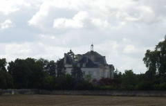 Château de Plassac - English: Château de Plassac in the distance, seen from the north