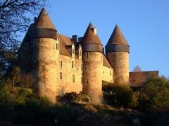 Eglise paroissiale Saint-Martial -  Le château de Culan - Photo amateur prise par moi-même
