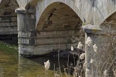 Ouvrages du canal de Berry - Colombiers (Cher)  Pont-canal de la Tranchasse.  Il s\'agit d\'un pont en arc surbaissé, en maçonnerie, d\'une longueur de 96m. C\'est le plus grand pont-canal du canal de Berry. Il traverse la rivière le Cher et relie les communes deColombiers (Cher) et Ainay-le-Vieil (Cher).  Cet ouvrage, situé sur le canal du Berry, a été construit entre 1829 et 1834, sur un projet de l\'ingénieur Vauvilliers* en 1822. La conception de l\'ouvrage est de l\'ingénieur-économiste-géomètre Joseph-Michel Dutens*.  La mauvaise qualité de la pierre locale utilisée rendra nécessaire la restauration du pont-canal dès 1837. En 1844 et 1872, des travaux d\'étanchéïté seront nécessaires. La largeur de la cuvette est portée de 2,70 m à 5,30 m en 1872. En décembre 1878, une partie du pont-canal s\'écroule. Des tirants terminés par des ancres en fonte sont posés pour consolider les murs de la cuvette et les piles sont cerclées.  L\'utilisation du pont-canal cessera en 1955.     Charles Chrétien Constant Vauvilliers (1780-1848), ingénieur des ponts et chaussées.  Entre 1825 et 1830, il est chargé du service du canal de Berry. Joseph-Michel Dutens, né à Tours le 15 octobre 1765, décédé le 6 août 1848. Ingénieur des ponts et chaussées. Il se consacre aussi à la publication d\'ouvrages d\'économie politique dans lesquels il se montrera comme un disciple du physiocrate François Quesnay (Toute richesse vient de la terre, la seule classe productive est celle des agriculteurs, il existe des lois naturelles basées sur la liberté et la propriété privée.).     Voir: base documentaire de la DRAC réalisé par Valérie Mauret Cribrelier.